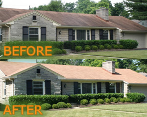 chemical roof cleaning virginia